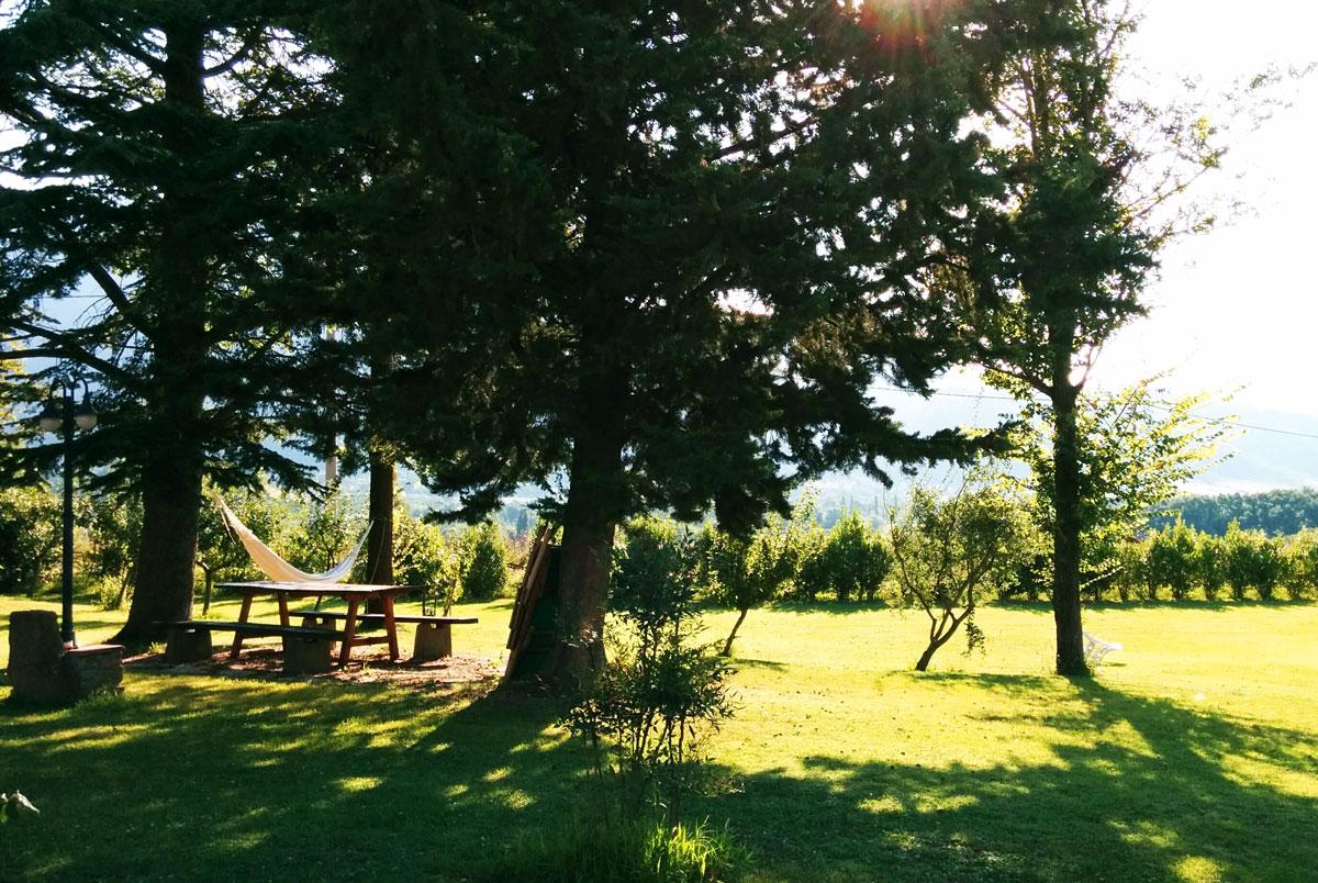 Il giardino del B&b Casale Bosco